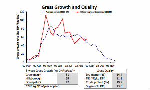 Grass Growth 300x175 NI